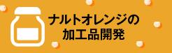 ナルトオレンジの加工品開発